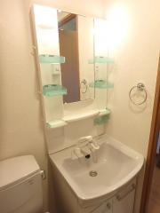 グレースフレア 1K/9階の内装 身支度時に便利な洗髪洗面化粧台