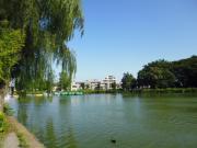 ヴィラ石神井公園 1R/2階の周辺 トモズ石神井公園店まで395m♪