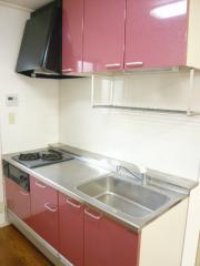 エクセレント錦A 2LDK/2階のキッチン ★2口ガスコンロ、グリルの付いたキッチン★