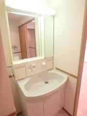 PRECIOUS24 3LDK/4階の内装 ★シャワー付洗面化粧台★ ※別室参考写真※