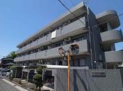 コートピレリ北松戸 1K/3階の外観
