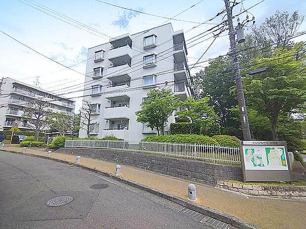 横浜線 淵野辺駅 小山田桜台 マンション