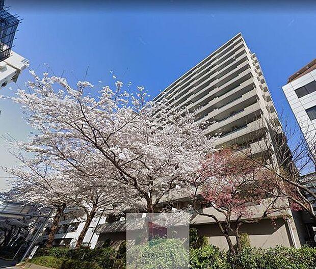 都営大江戸線 練馬駅より 徒歩5分