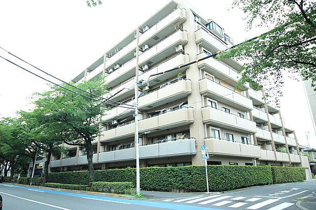 都営大江戸線 練馬春日町駅より 徒歩8分